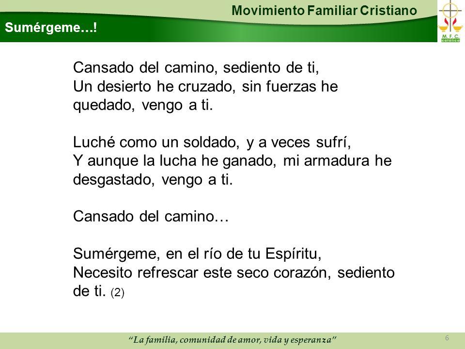 Movimiento Familiar Cristiano La familia, comunidad de amor, vida y esperanza Sumérgeme….