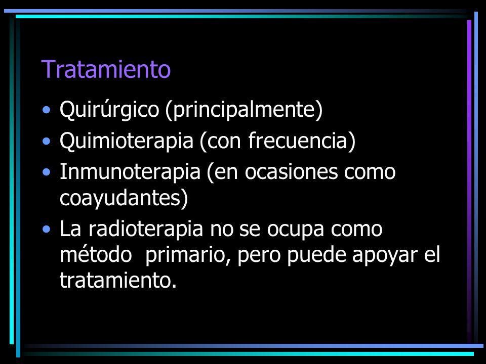Tratamiento Quirúrgico (principalmente) Quimioterapia (con frecuencia) Inmunoterapia (en ocasiones como coayudantes) La radioterapia no se ocupa como