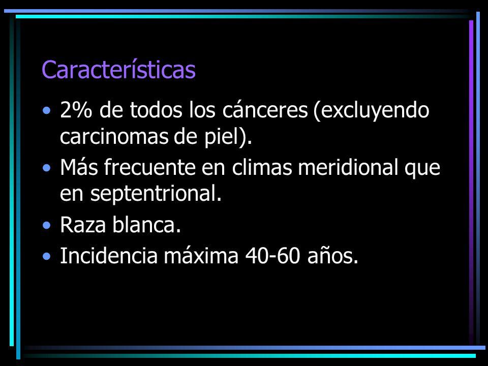 Características 2% de todos los cánceres (excluyendo carcinomas de piel). Más frecuente en climas meridional que en septentrional. Raza blanca. Incide