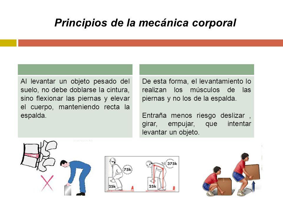 Principios de la mecánica corporal Al levantar un objeto pesado del suelo, no debe doblarse la cintura, sino flexionar las piernas y elevar el cuerpo, manteniendo recta la espalda.