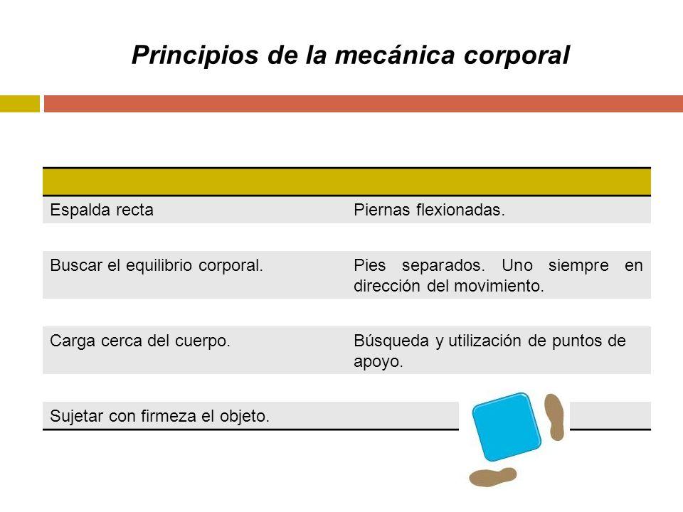 Principios de la mecánica corporal Espalda rectaPiernas flexionadas.