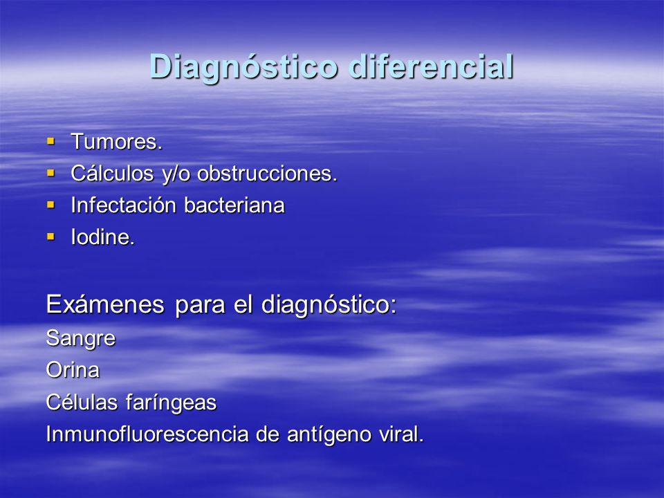 Diagnóstico diferencial  Tumores. Cálculos y/o obstrucciones.