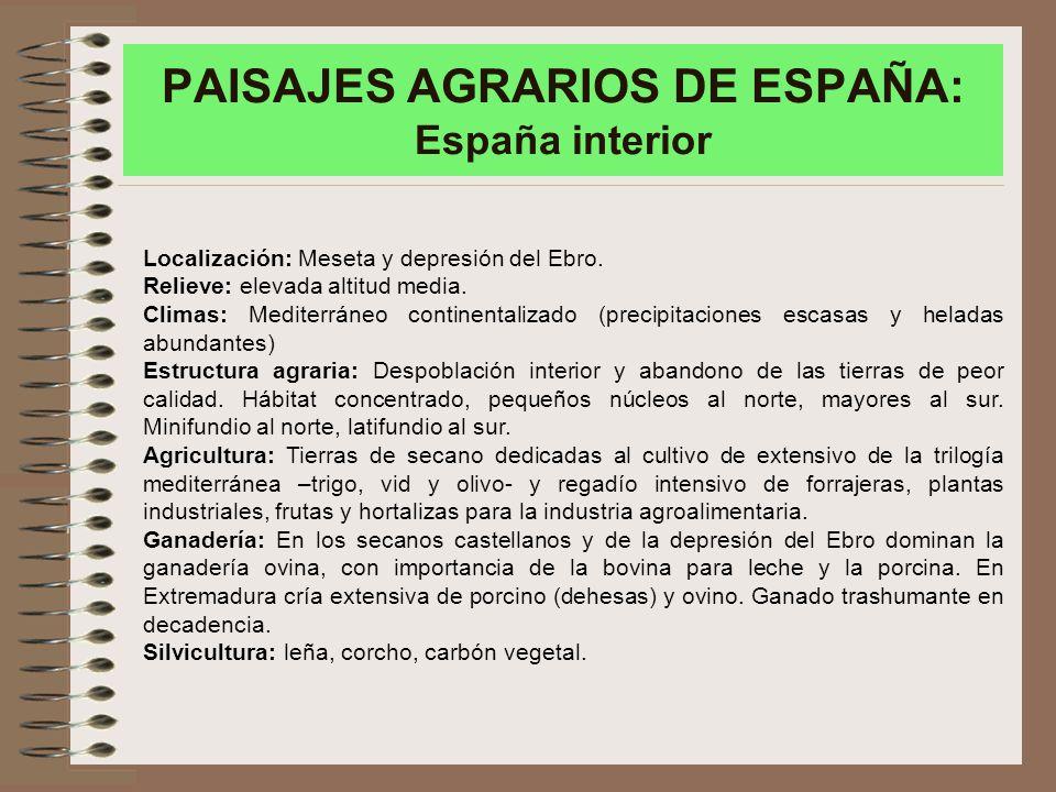 PAISAJES AGRARIOS DE ESPAÑA: España interior Localización: Meseta y depresión del Ebro.