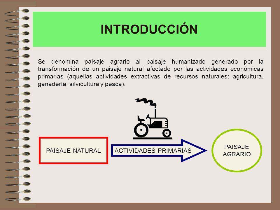 INTRODUCCIÓN Se denomina paisaje agrario al paisaje humanizado generado por la transformación de un paisaje natural afectado por las actividades económicas primarias (aquellas actividades extractivas de recursos naturales: agricultura, ganadería, silvicultura y pesca).
