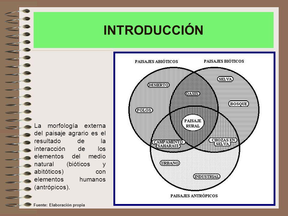 La morfología externa del paisaje agrario es el resultado de la interacción de los elementos del medio natural (bióticos y abitóticos) con elementos humanos (antrópicos).