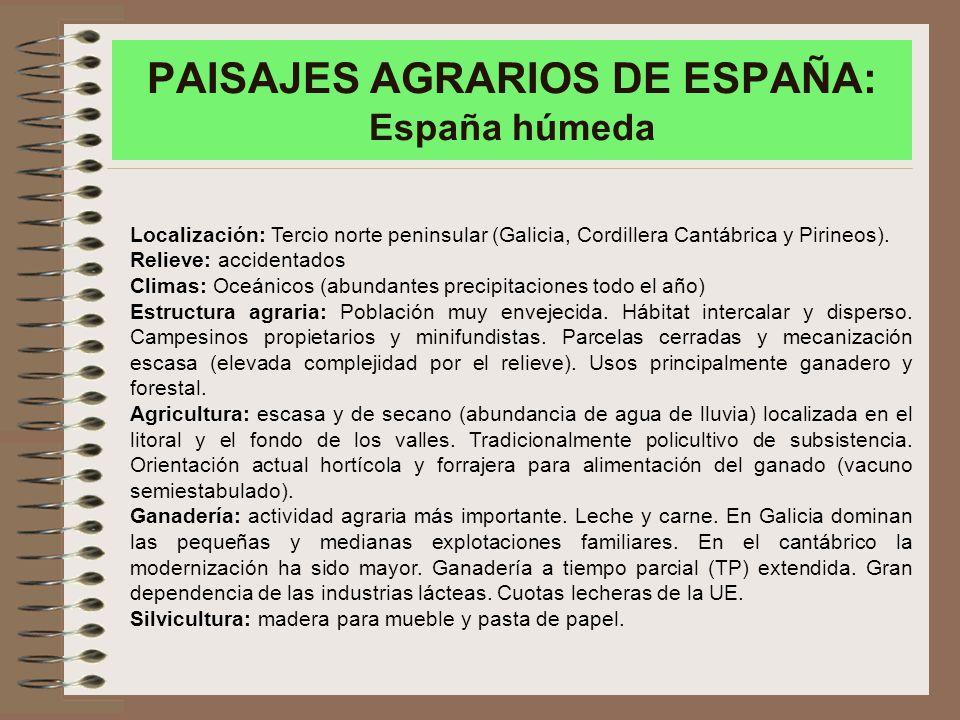 PAISAJES AGRARIOS DE ESPAÑA: España húmeda Localización: Tercio norte peninsular (Galicia, Cordillera Cantábrica y Pirineos).