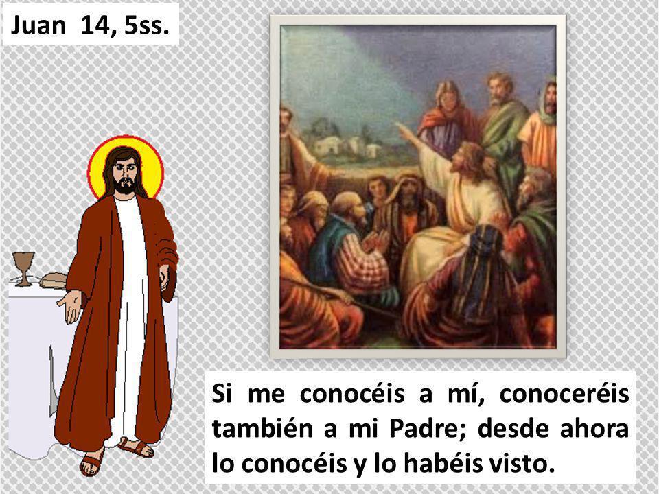 Si me conocéis a mí, conoceréis también a mi Padre; desde ahora lo conocéis y lo habéis visto. Juan 14, 5ss.
