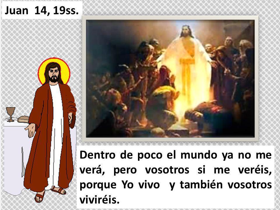 Aquel día comprenderéis que Yo estoy en mi Padre y vosotros en mí y Yo en vosotros. Juan 14, 19ss.