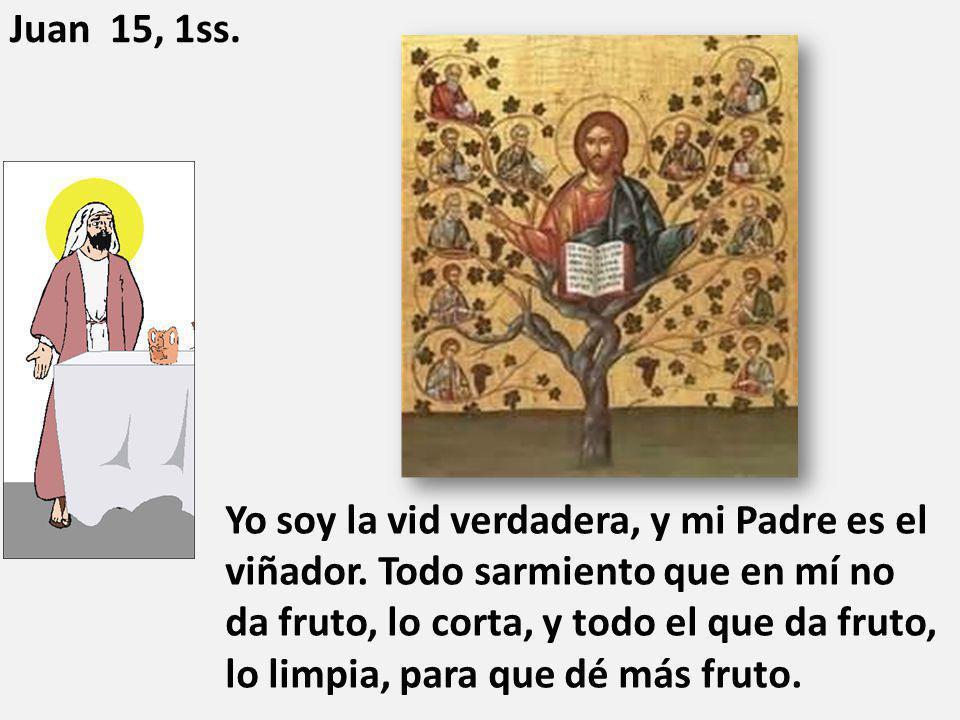 Yo soy la vid verdadera, y mi Padre es el viñador. Todo sarmiento que en mí no da fruto, lo corta, y todo el que da fruto, lo limpia, para que dé más