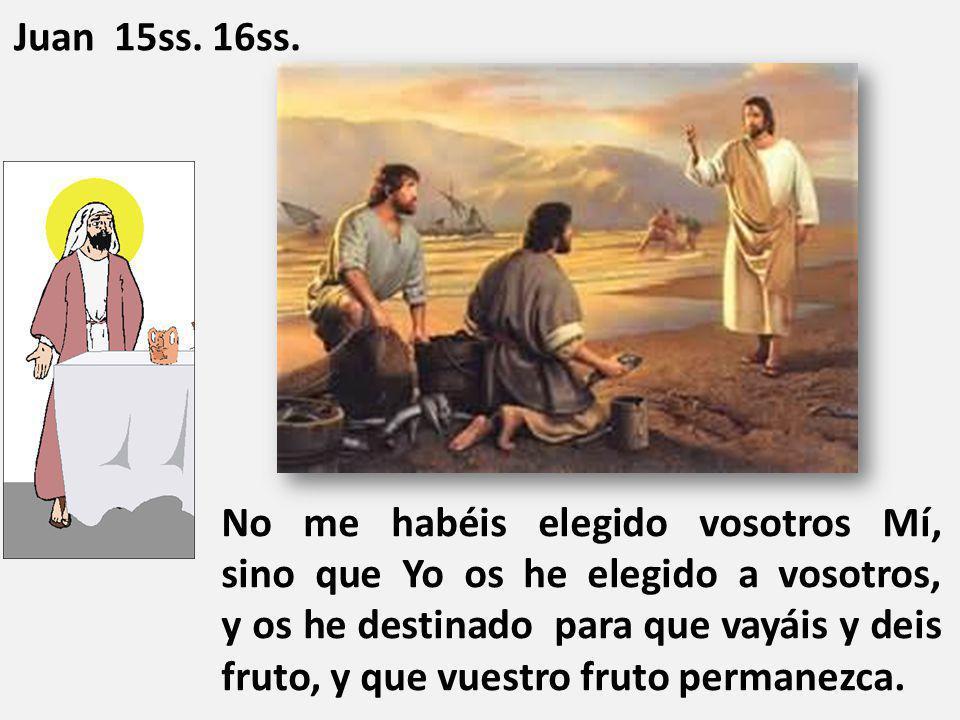 No me habéis elegido vosotros Mí, sino que Yo os he elegido a vosotros, y os he destinado para que vayáis y deis fruto, y que vuestro fruto permanezca