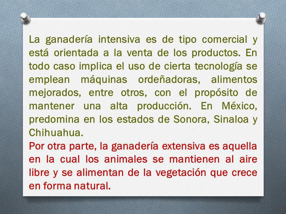 La ganadería intensiva es de tipo comercial y está orientada a la venta de los productos.