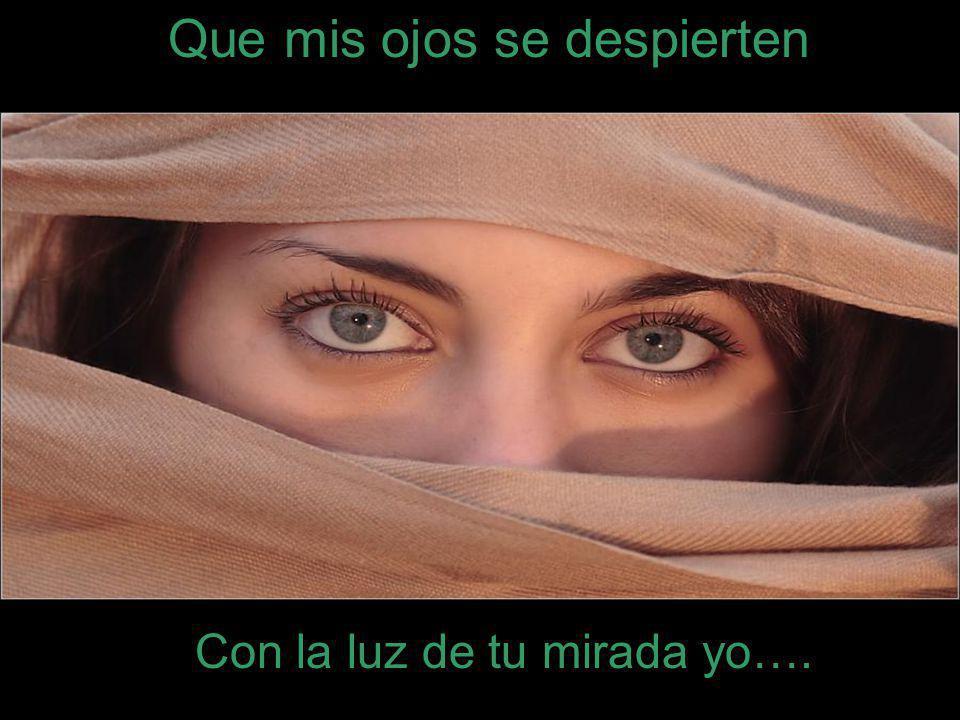 Que mis ojos se despierten Con la luz de tu mirada yo….