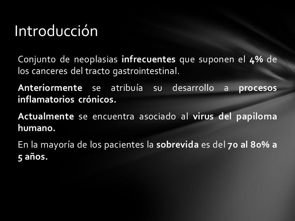 Conjunto de neoplasias infrecuentes que suponen el 4% de los canceres del tracto gastrointestinal. Anteriormente se atribuía su desarrollo a procesos