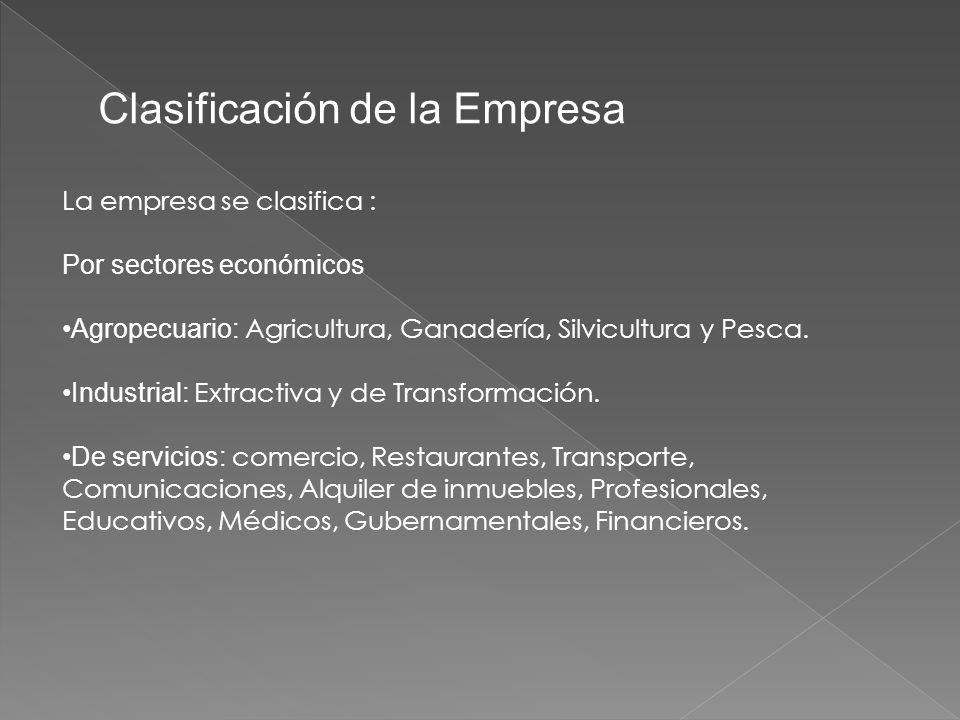 Clasificación de la Empresa La empresa se clasifica : Por sectores económicos Agropecuario: Agricultura, Ganadería, Silvicultura y Pesca.