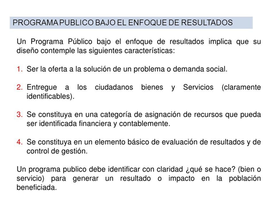 PROGRAMA PUBLICO BAJO EL ENFOQUE DE RESULTADOS