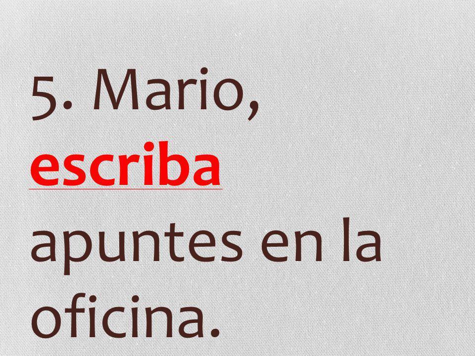 5. Mario, escriba apuntes en la oficina.