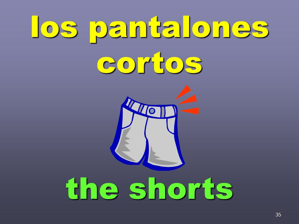 35 los pantalones cortos the shorts