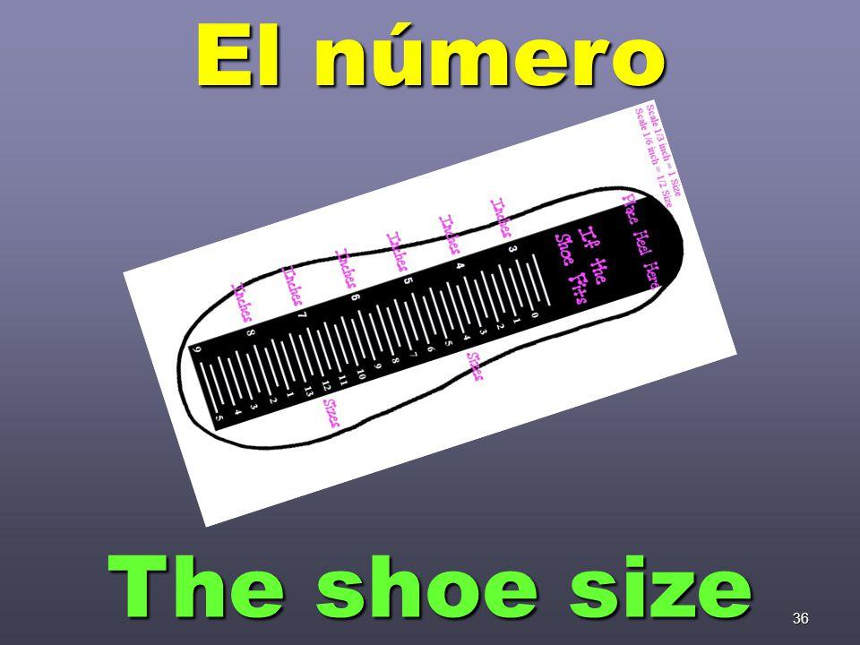 36 El número The shoe size