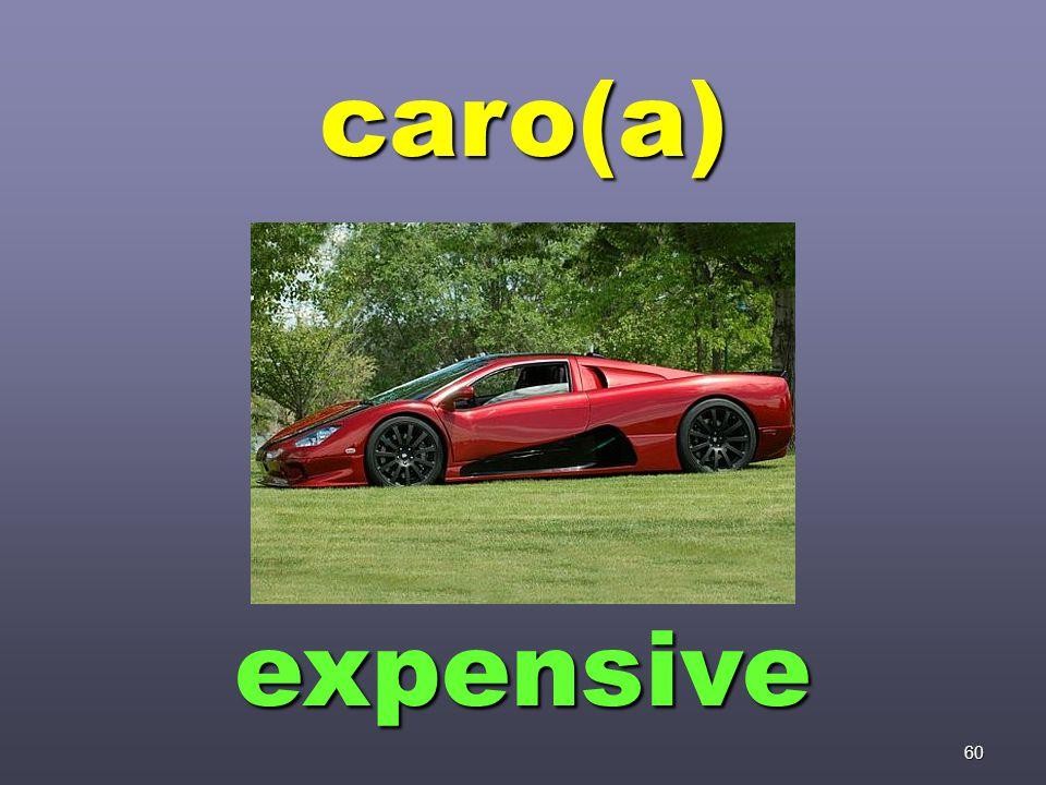 60 caro(a) expensive