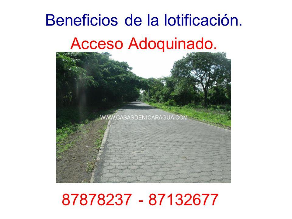 Beneficios de la lotificación. Acceso Adoquinado. 87878237 - 87132677