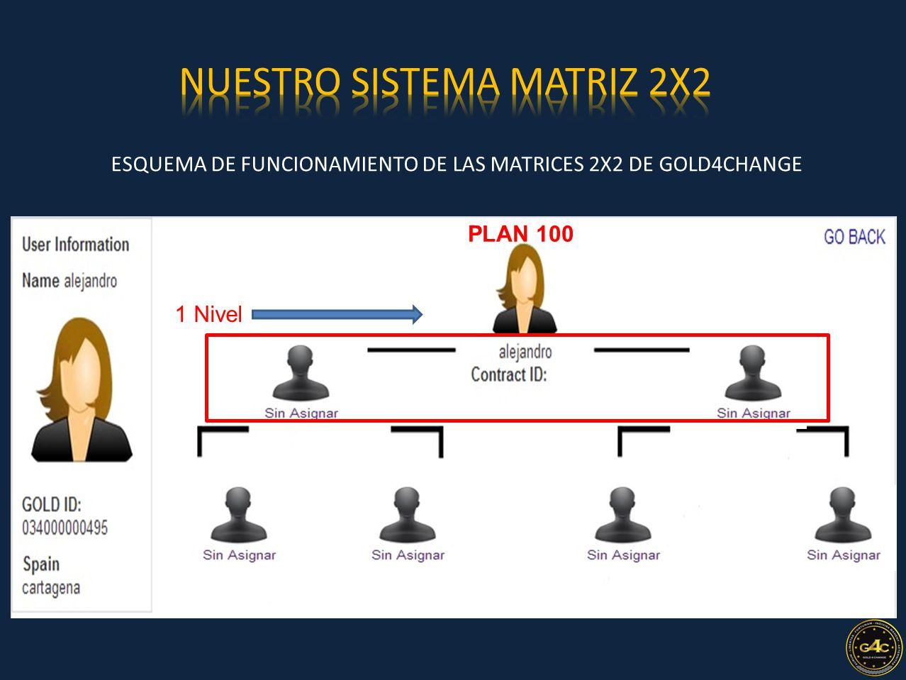 ESQUEMA DE FUNCIONAMIENTO DE LAS MATRICES 2X2 DE GOLD4CHANGE PLAN 100 1 Nivel