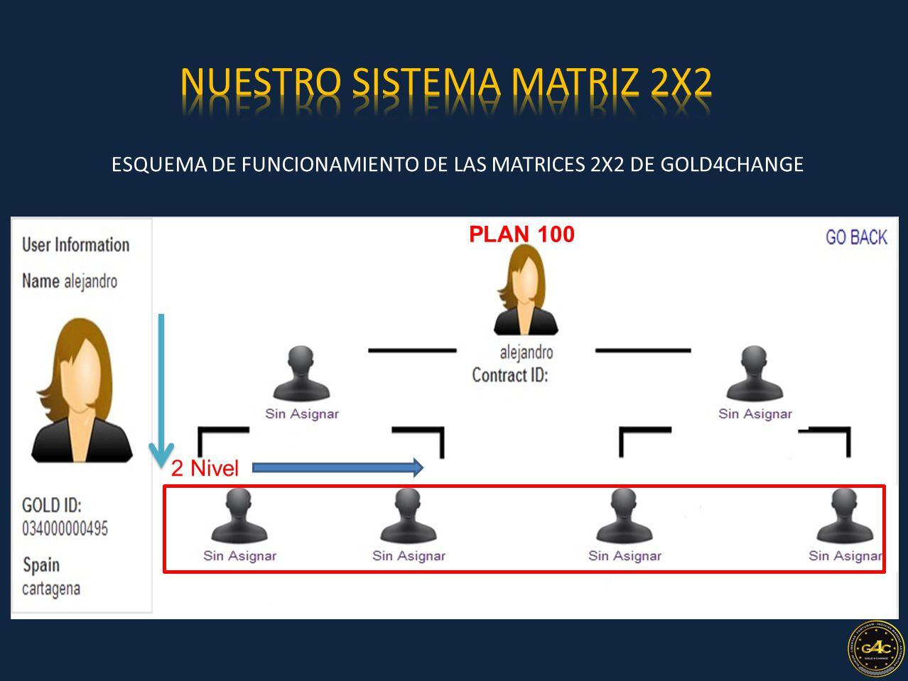 ESQUEMA DE FUNCIONAMIENTO DE LAS MATRICES 2X2 DE GOLD4CHANGE PLAN 100 2 Nivel