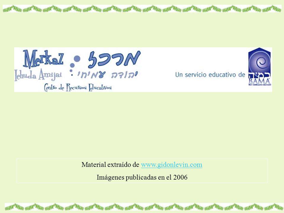 Material extraído de www.gidonlevin.comwww.gidonlevin.com Imágenes publicadas en el 2006