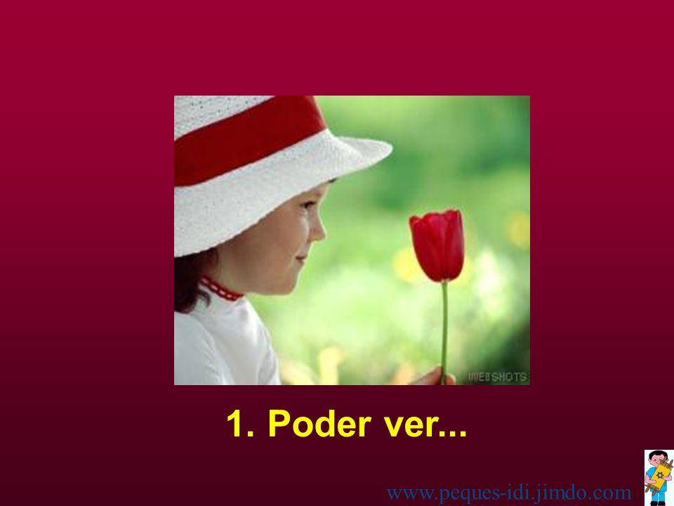 La niña lo pensó un instante, pero luego leyó: Yo pienso que las siete maravillas del mundo son: www.peques-idi.jimdo.com