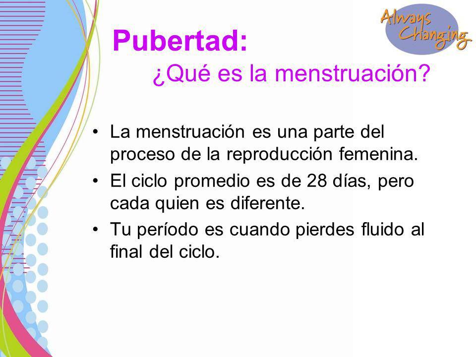 La menstruación es una parte del proceso de la reproducción femenina.