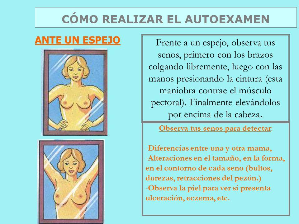 Frente a un espejo, observa tus senos, primero con los brazos colgando libremente, luego con las manos presionando la cintura (esta maniobra contrae el músculo pectoral).