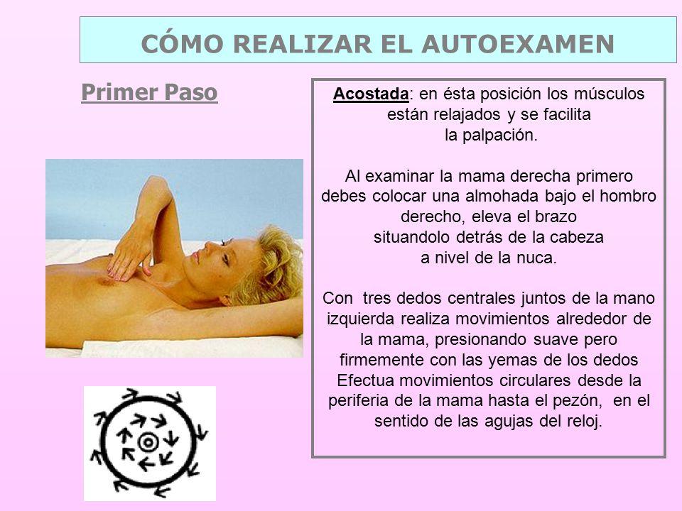 Primer Paso CÓMO REALIZAR EL AUTOEXAMEN Acostada: en ésta posición los músculos están relajados y se facilita la palpación.