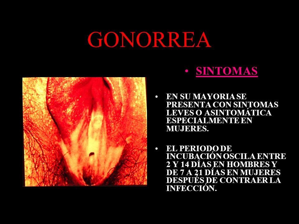 GONORREA Mujeres: Flujo vaginal espeso, amarillo y blanco Ardor o dolor al orinar o defecar Dolor mas intenso durante la MENSTRUACION.