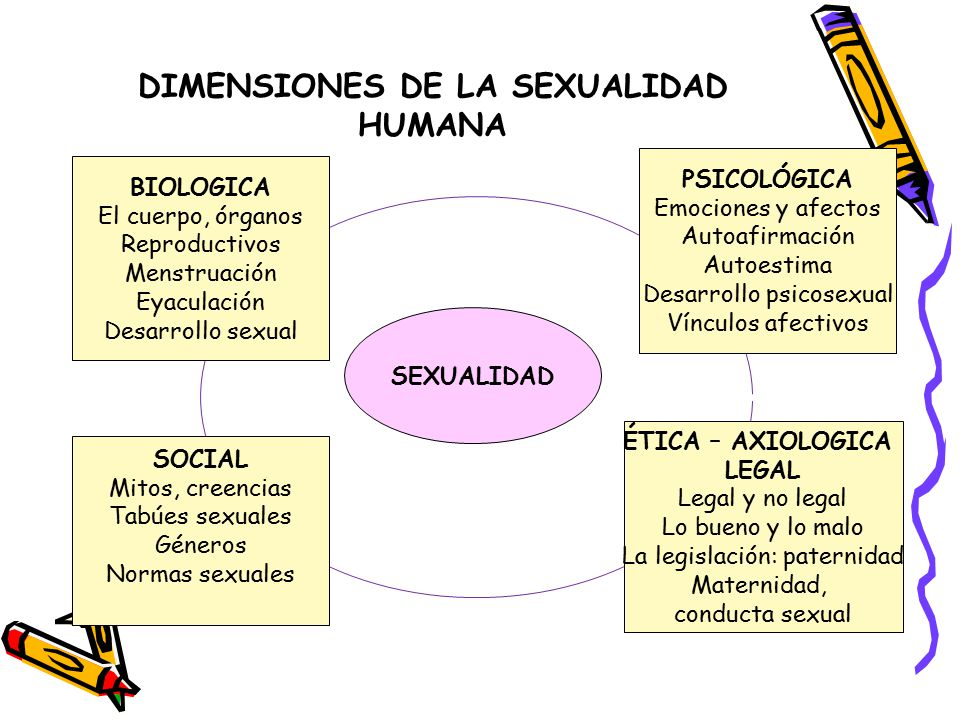 DIMENSIONES DE LA SEXUALIDAD HUMANA SEXUALIDAD BIOLOGICA El cuerpo, órganos Reproductivos Menstruación Eyaculación Desarrollo sexual PSICOLÓGICA Emociones y afectos Autoafirmación Autoestima Desarrollo psicosexual Vínculos afectivos SOCIAL Mitos, creencias Tabúes sexuales Géneros Normas sexuales ÉTICA – AXIOLOGICA LEGAL Legal y no legal Lo bueno y lo malo La legislación: paternidad Maternidad, conducta sexual