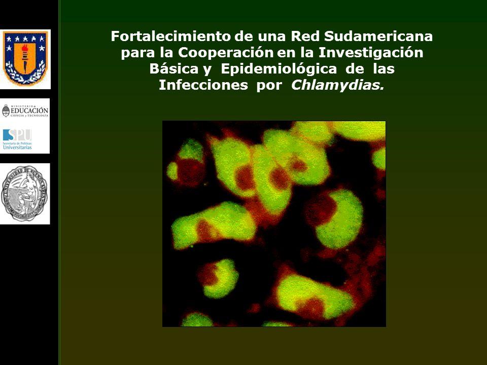 Fortalecimiento de una Red Sudamericana para la Cooperación en la Investigación Básica y Epidemiológica de las Infecciones por Chlamydias.