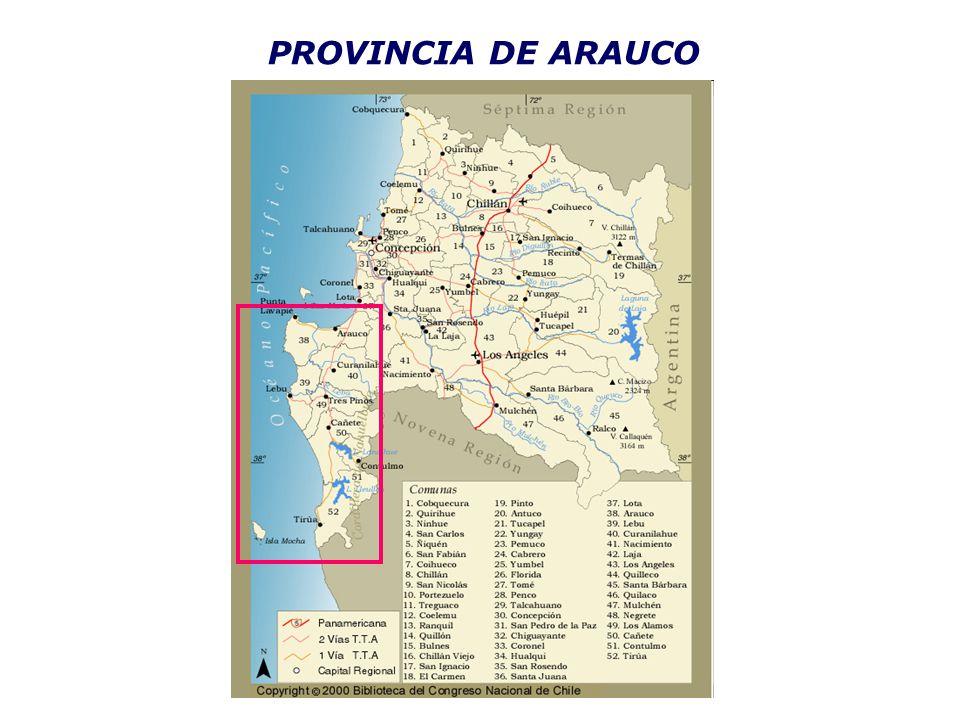 PROVINCIA DE ARAUCO