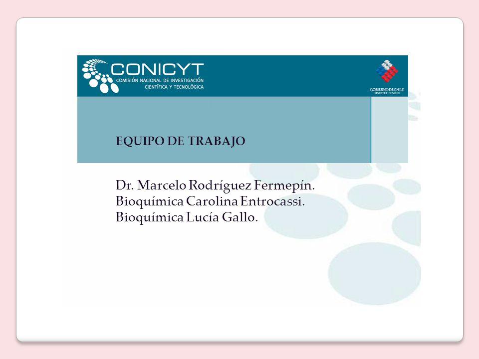 EQUIPO DE TRABAJO Dr. Marcelo Rodríguez Fermepín.