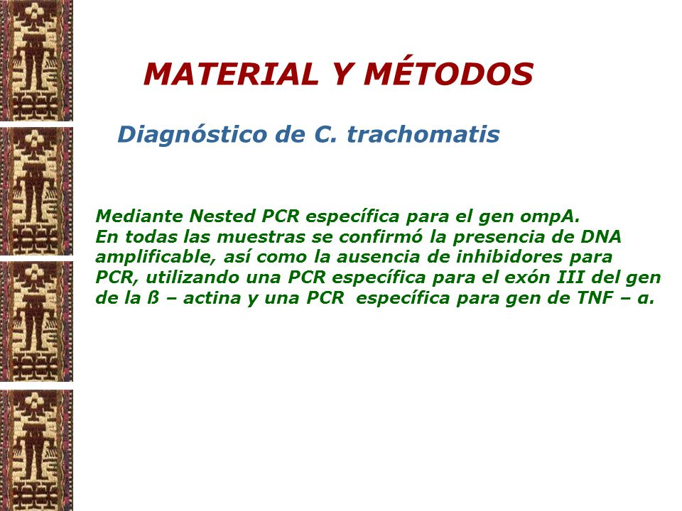 MATERIAL Y MÉTODOS Mediante Nested PCR específica para el gen ompA.