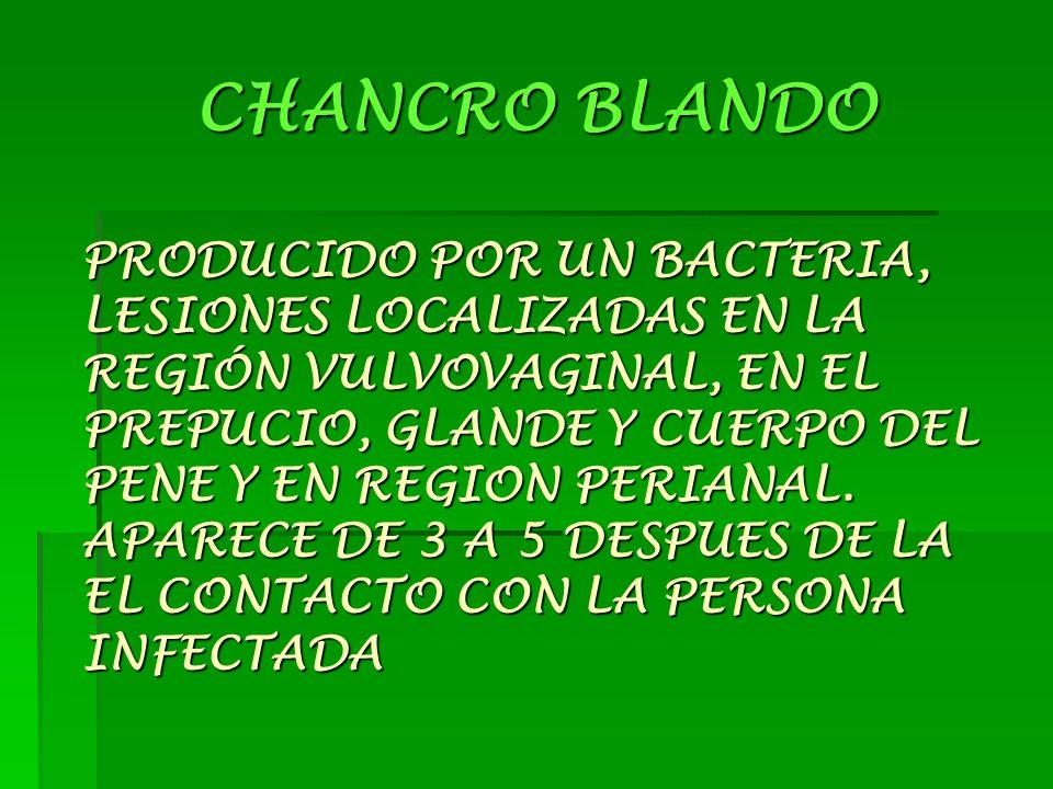 CHANCRO BLANDO PRODUCIDO POR UN BACTERIA, LESIONES LOCALIZADAS EN LA REGIÓN VULVOVAGINAL, EN EL PREPUCIO, GLANDE Y CUERPO DEL PENE Y EN REGION PERIANAL.