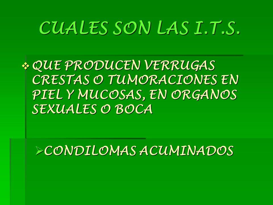 CUALES SON LAS I.T.S.  QUE PROVOCA ATAQUE AL SISTEMA DE DEFENSA DEL CUERPO  S.I.D.A.