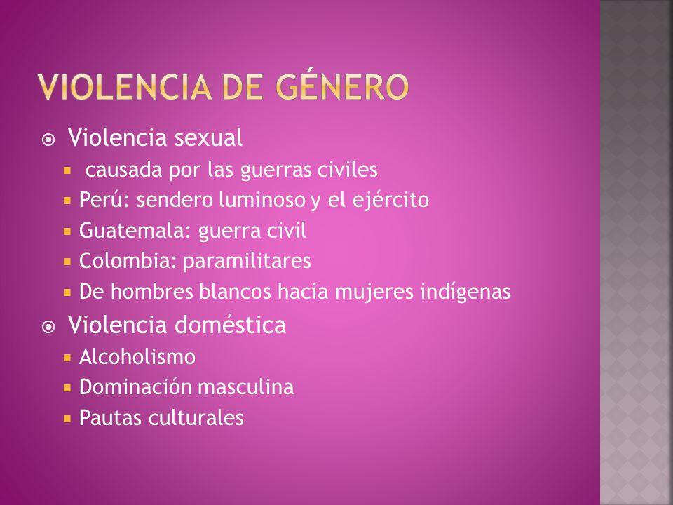  Violencia sexual  causada por las guerras civiles  Perú: sendero luminoso y el ejército  Guatemala: guerra civil  Colombia: paramilitares  De hombres blancos hacia mujeres indígenas  Violencia doméstica  Alcoholismo  Dominación masculina  Pautas culturales