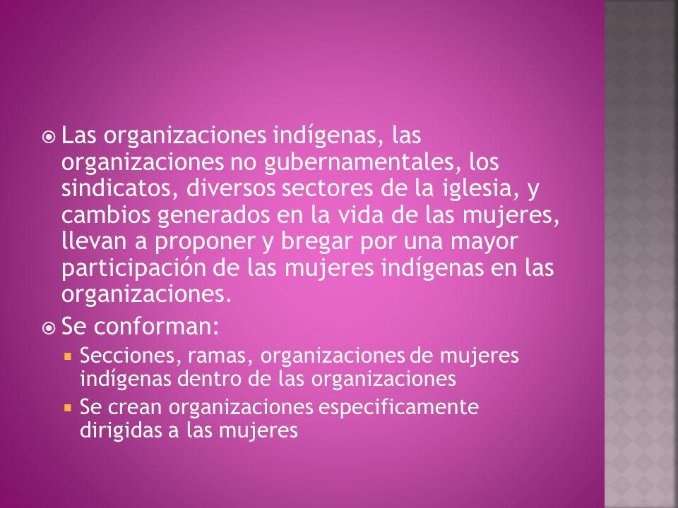  Las organizaciones indígenas, las organizaciones no gubernamentales, los sindicatos, diversos sectores de la iglesia, y cambios generados en la vida de las mujeres, llevan a proponer y bregar por una mayor participación de las mujeres indígenas en las organizaciones.