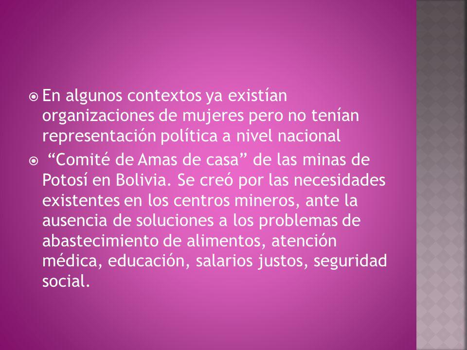  En algunos contextos ya existían organizaciones de mujeres pero no tenían representación política a nivel nacional  Comité de Amas de casa de las minas de Potosí en Bolivia.