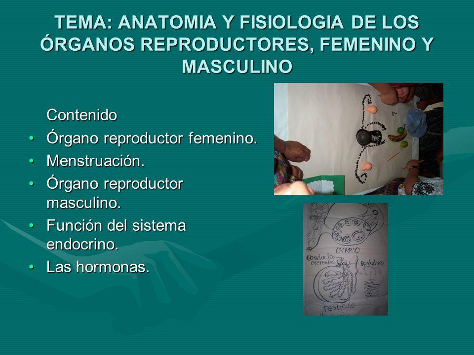TEMA: ANATOMIA Y FISIOLOGIA DE LOS ÓRGANOS REPRODUCTORES, FEMENINO Y MASCULINO Contenido Órgano reproductor femenino.Órgano reproductor femenino.