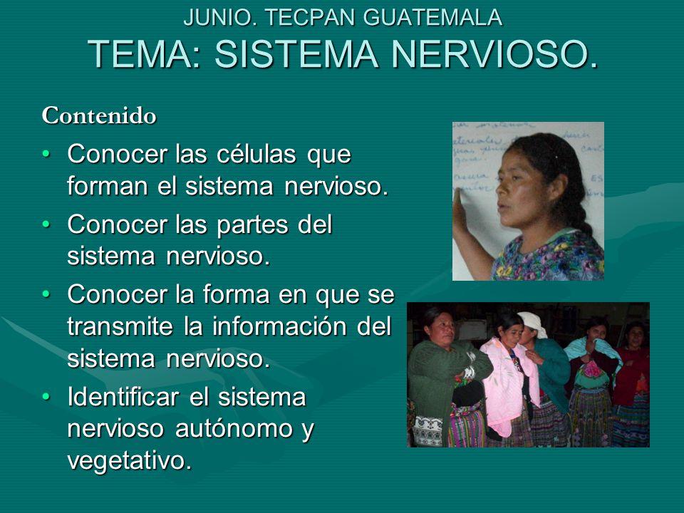 JUNIO. TECPAN GUATEMALA TEMA: SISTEMA NERVIOSO.
