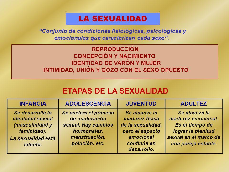 LA SEXUALIDAD REPRODUCCIÓN CONCEPCIÓN Y NACIMIENTO IDENTIDAD DE VARÓN Y MUJER INTIMIDAD, UNIÓN Y GOZO CON EL SEXO OPUESTO ETAPAS DE LA SEXUALIDAD INFANCIAADOLESCENCIAJUVENTUDADULTEZ Se desarrolla la identidad sexual (masculinidad y feminidad).
