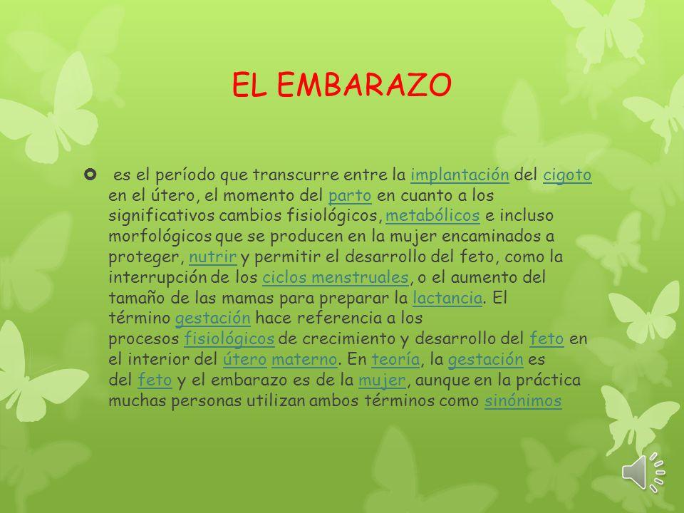 Luisa Velasco EL EMBARAZO Noveno Liceo Mixto La Milagrosa 28/05/14