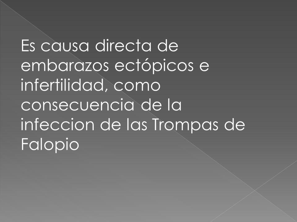 Es causa directa de embarazos ectópicos e infertilidad, como consecuencia de la infeccion de las Trompas de Falopio