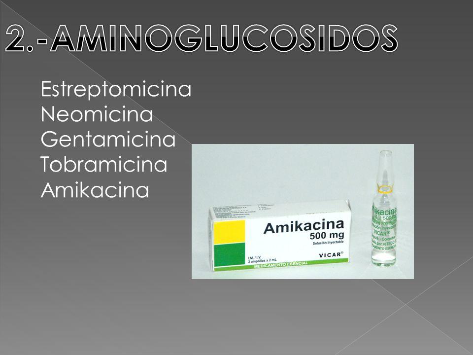 Estreptomicina Neomicina Gentamicina Tobramicina Amikacina