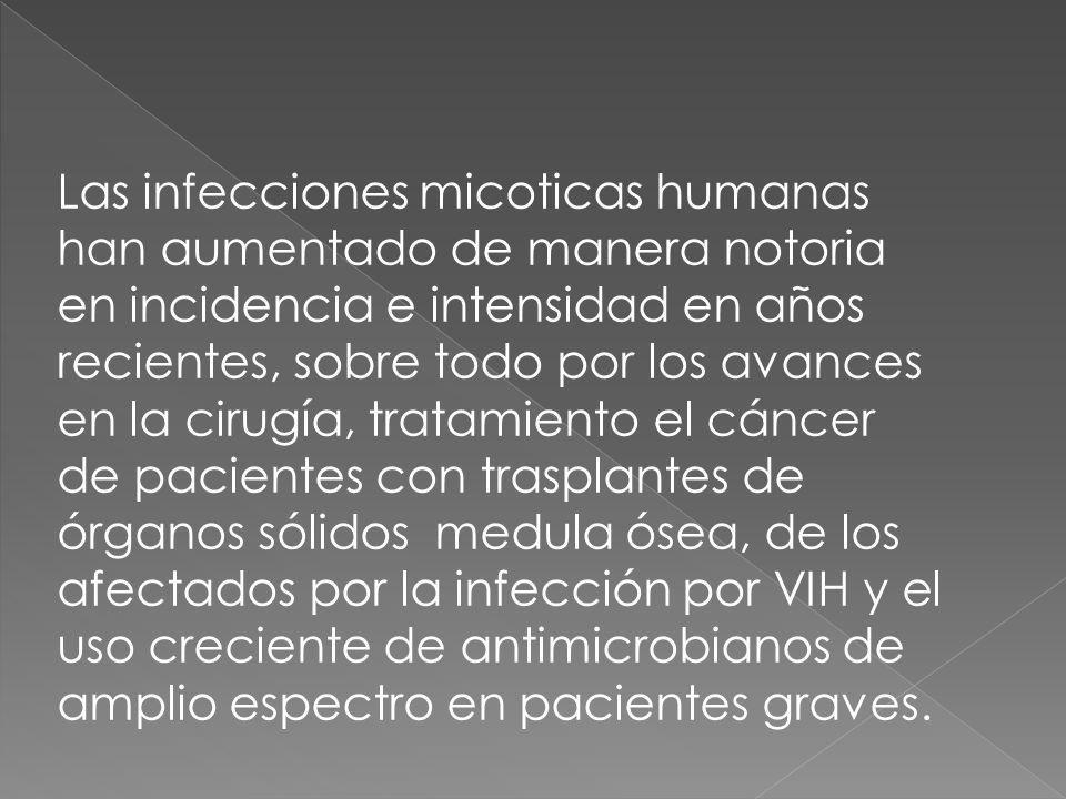 Las infecciones micoticas humanas han aumentado de manera notoria en incidencia e intensidad en años recientes, sobre todo por los avances en la cirugía, tratamiento el cáncer de pacientes con trasplantes de órganos sólidos medula ósea, de los afectados por la infección por VIH y el uso creciente de antimicrobianos de amplio espectro en pacientes graves.