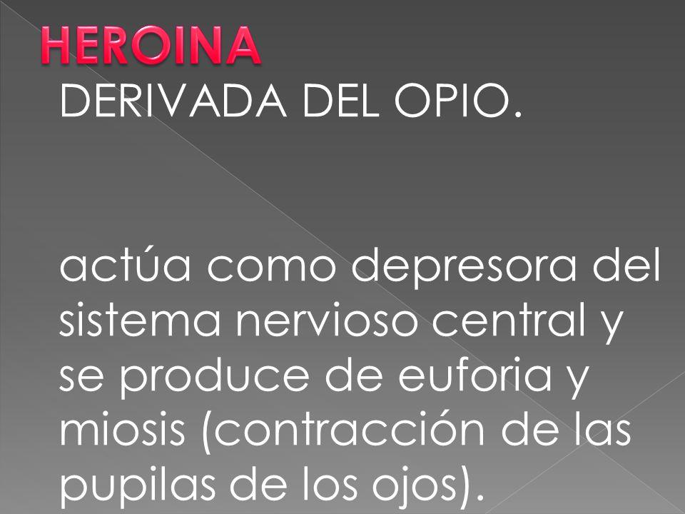 DERIVADA DEL OPIO.